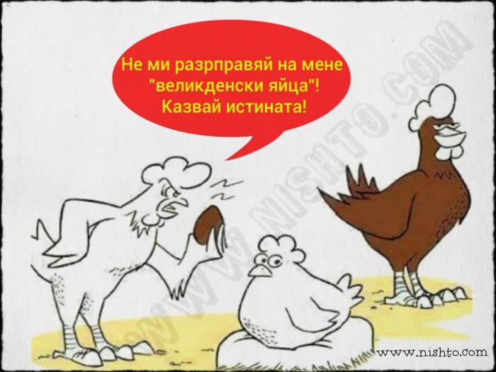 Вицове: Великденско яйце