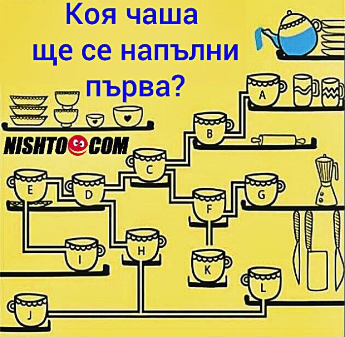 Вицове: Коя чаша ще се напълни първа?