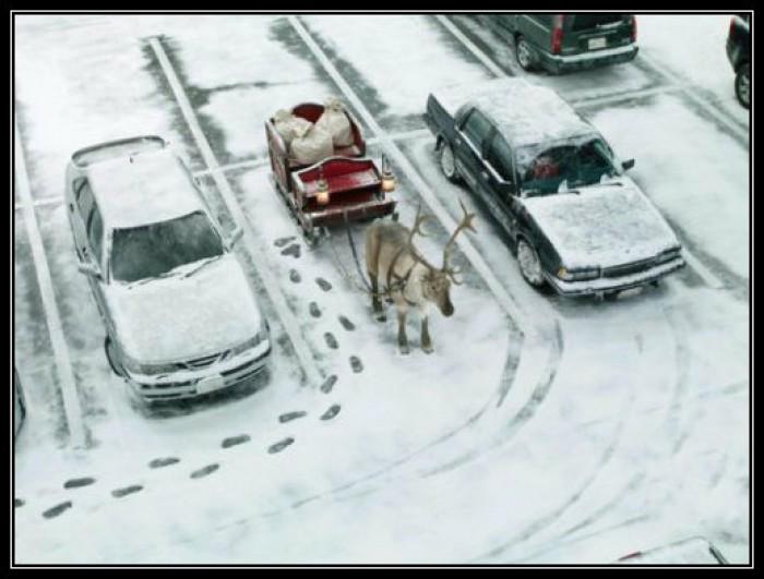 Вицове: Правилно паркиране!