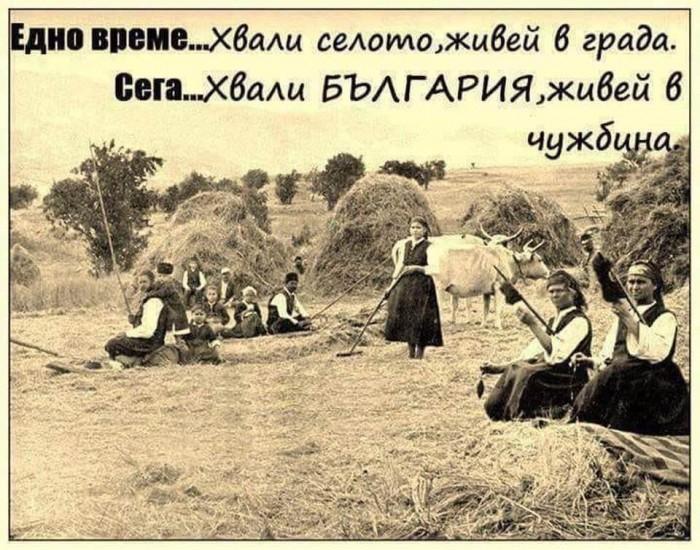 Вицове: България в две изречения