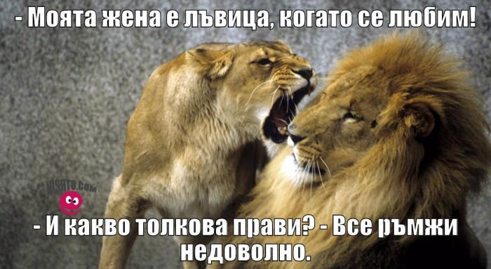 Вицове: Моята жена е лъвица