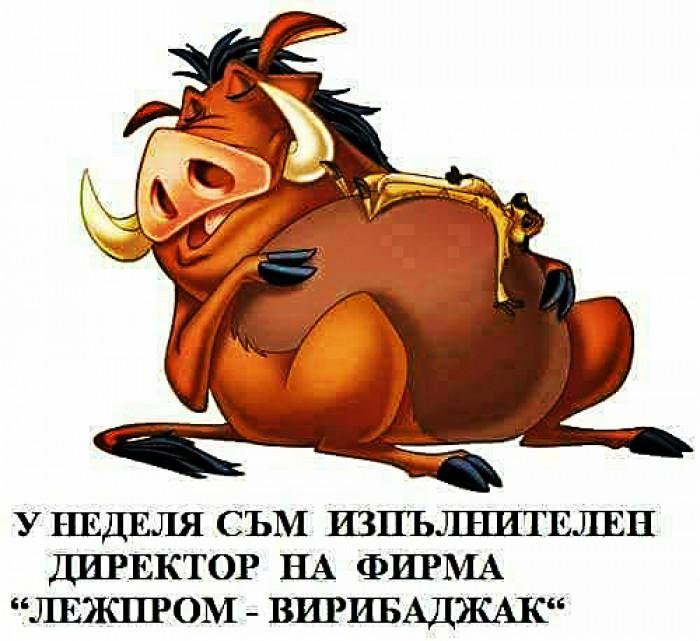 Вицове: Лежпром