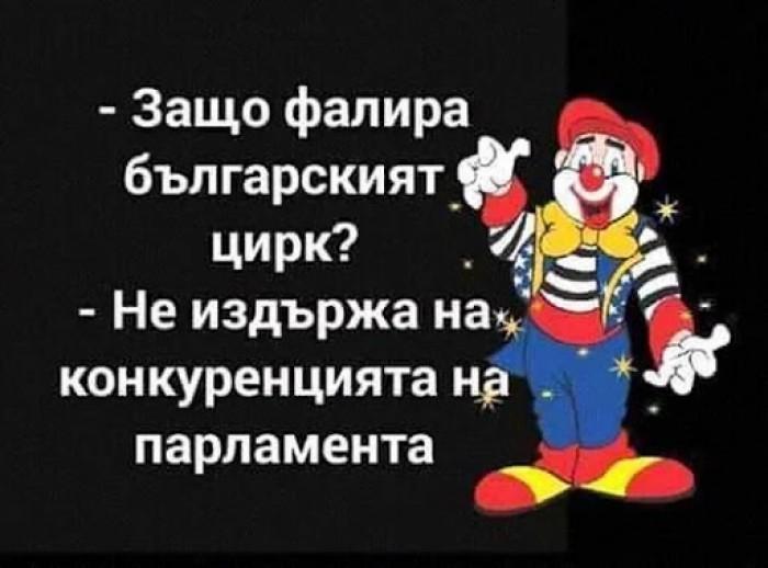 Вицове: Защо фалира българския цирк