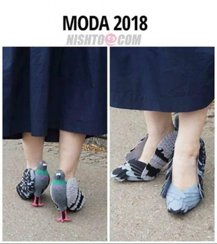 Вицове: Мода 2018