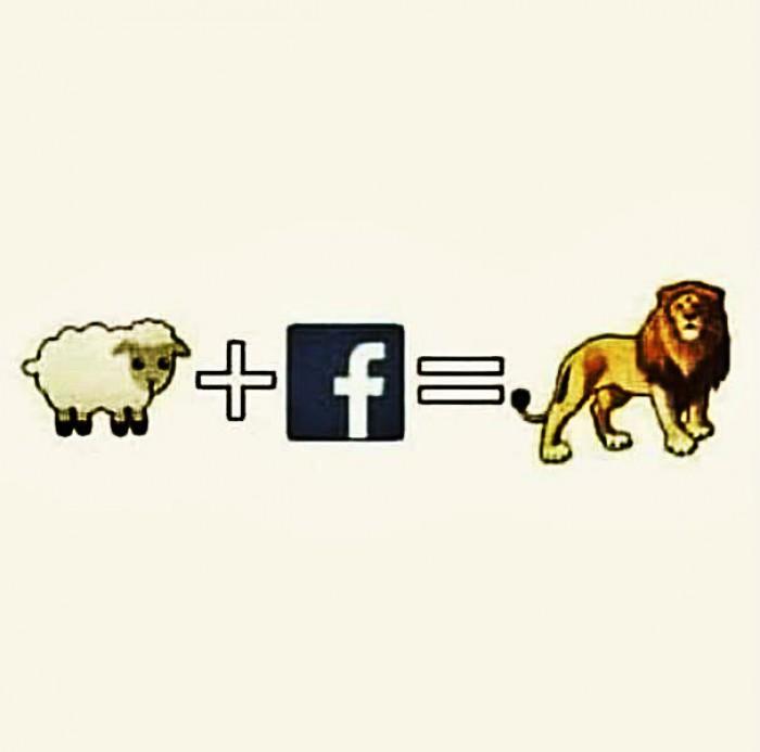 Вицове: Фейсбук