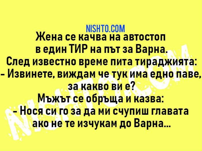 Вицове: Жена се качва на автостоп в един ТИР на път за Варна