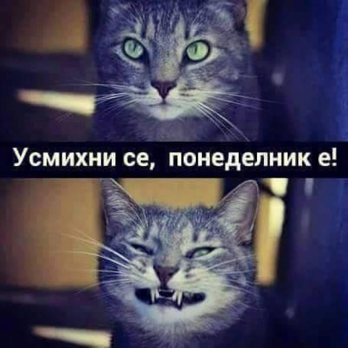 Вицове: Усмихни се