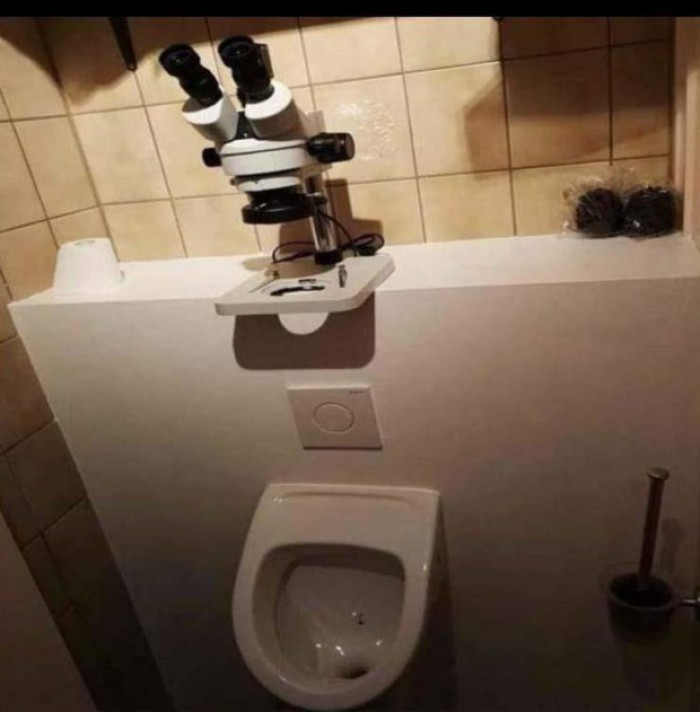 Вицове: Тоалетна