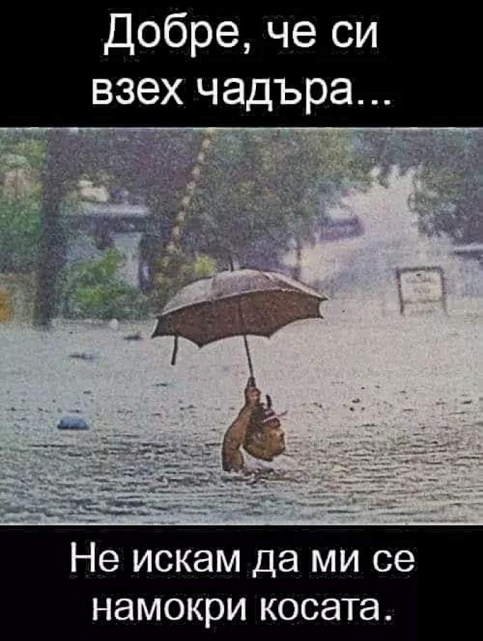 Вицове: Добре че си взех чадъра