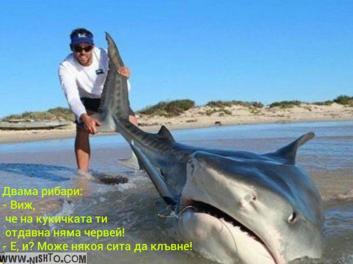 Вицове: Двама рибари