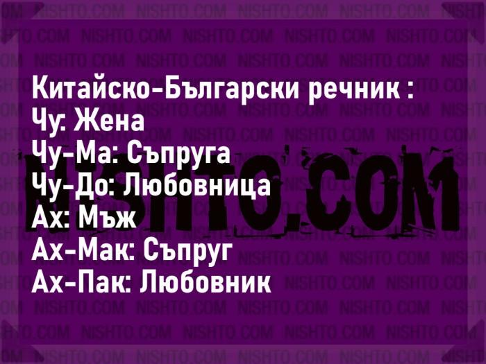 Вицове: Китайско-Български речник