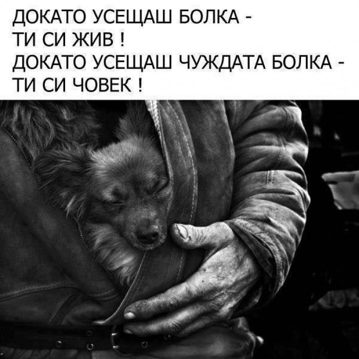 Вицове: Докато усещаш болка