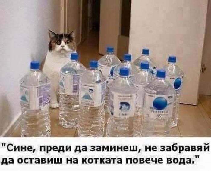 Вицове: Повече вода
