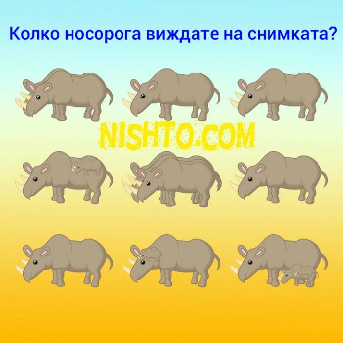 Вицове: Колко носорога виждате на снимката