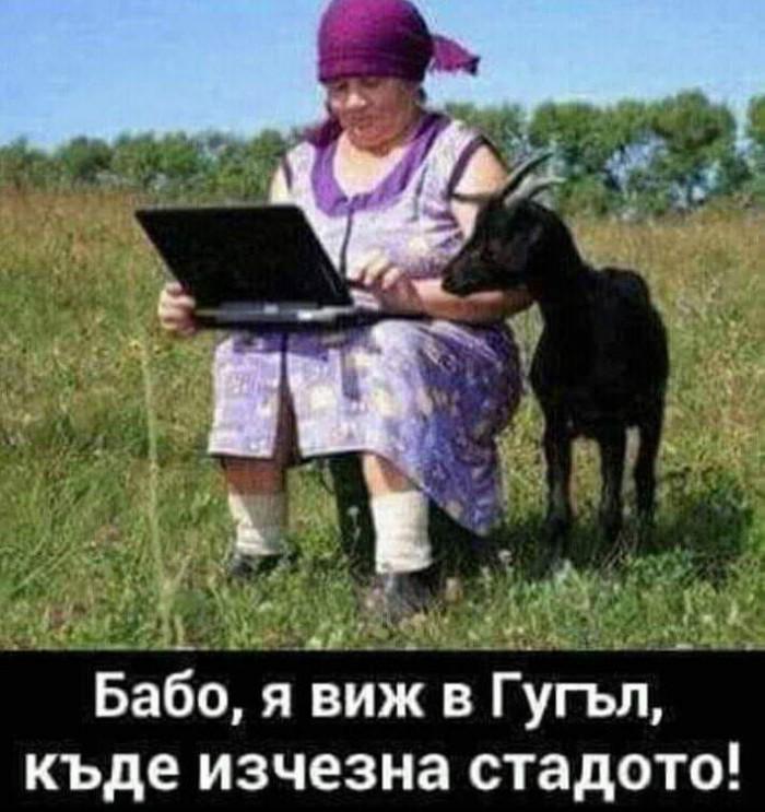 Вицове: Бабо я виж