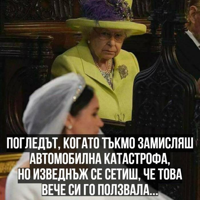 Вицове: Кралицата