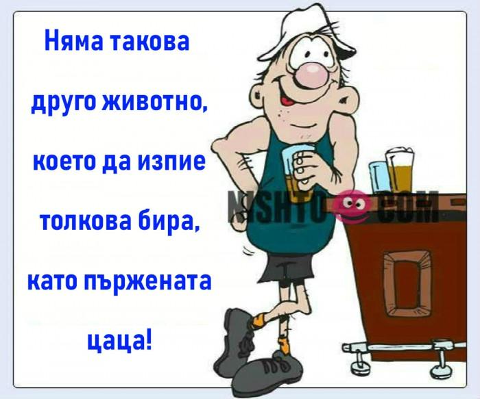 Вицове: Няма такова друго животно, което да изпие толкова бира