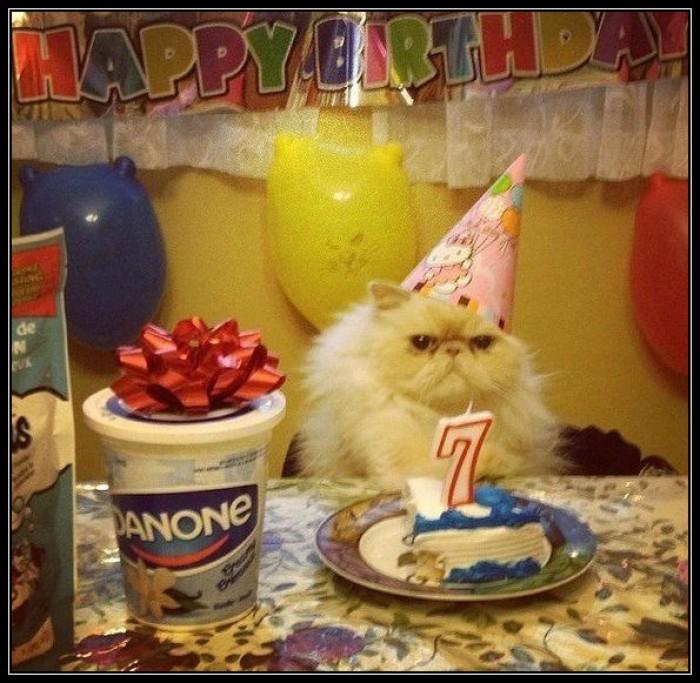 Вицове: Честит ми 44 рожден ден