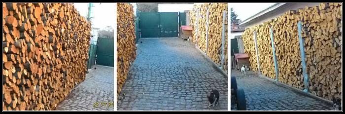 Вицове: Дървен интериор