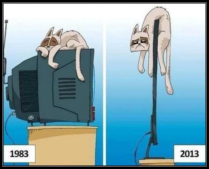 Вицове: Еволюция