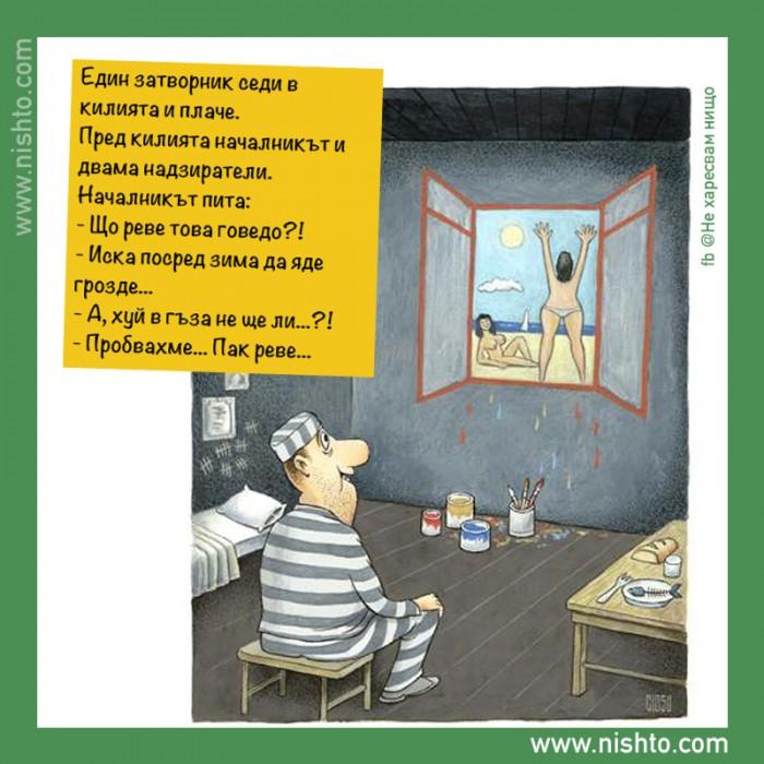 Вицове: Затворнически хумор 2