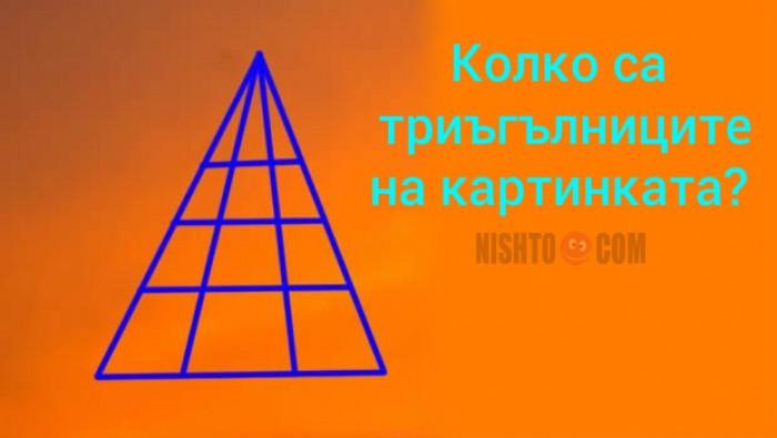 Вицове: Колко са триъгълниците на картинката?