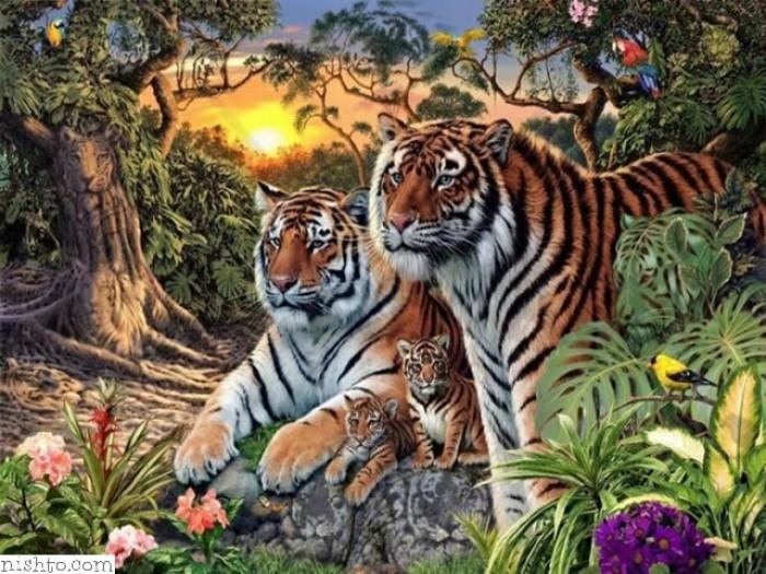 Вицове:  На пръв поглед виждате 4 тигъра, но в действителност има много повече