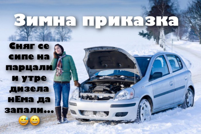 Вицове: Зимна приказка