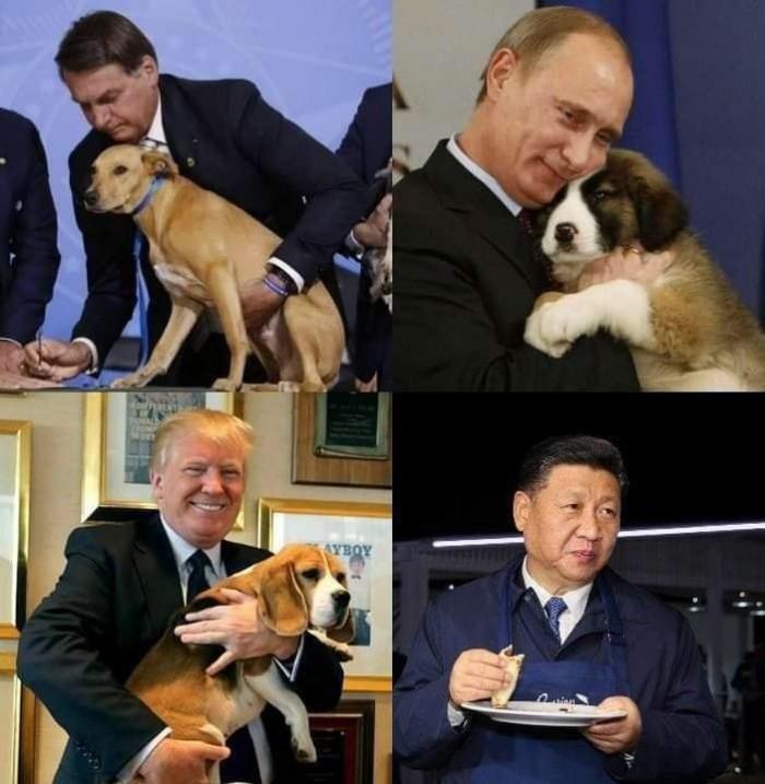 Вицове: Всички обичат кучета