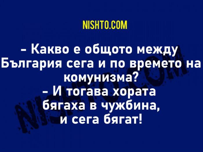 Вицове: Какво е общото между България